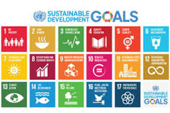 The UN sustainability goals.